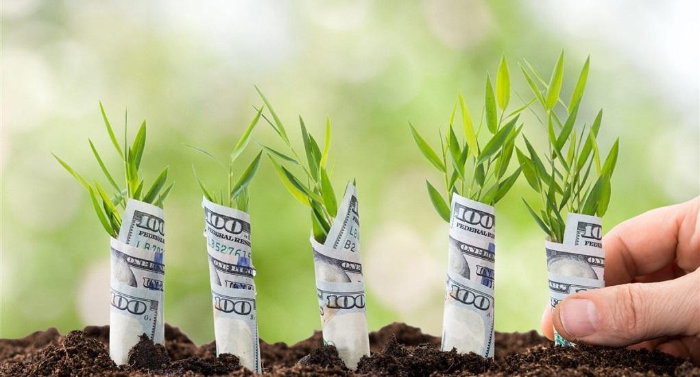 Mengenal Seed Funding Lebih Detail